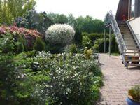 4-Zimmer-Ferienwohnung in Wathlingen - kleines Detailbild