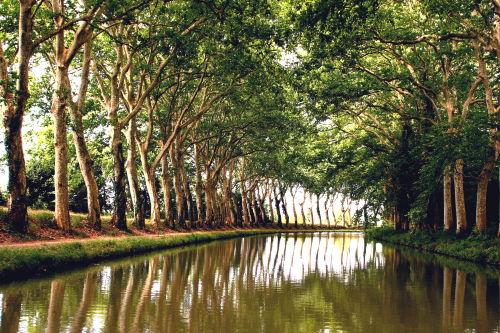 Canal-du-Midi, auch UNESCO-Denkmal