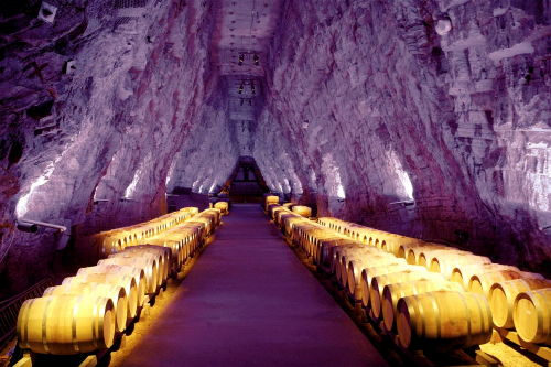Terra Vinea, Weinlager in Gipsmine