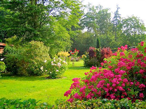 Parkartiger Garten und weitere Bilder!