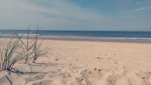 Umgebung von Ferienhaus am Meer