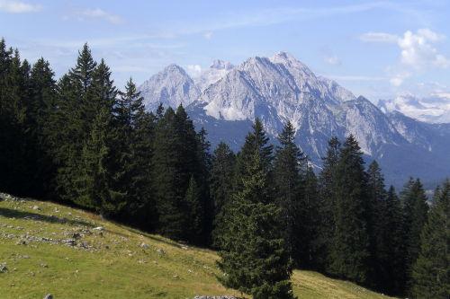 Blick vom Rehberg auf die Zugspitze