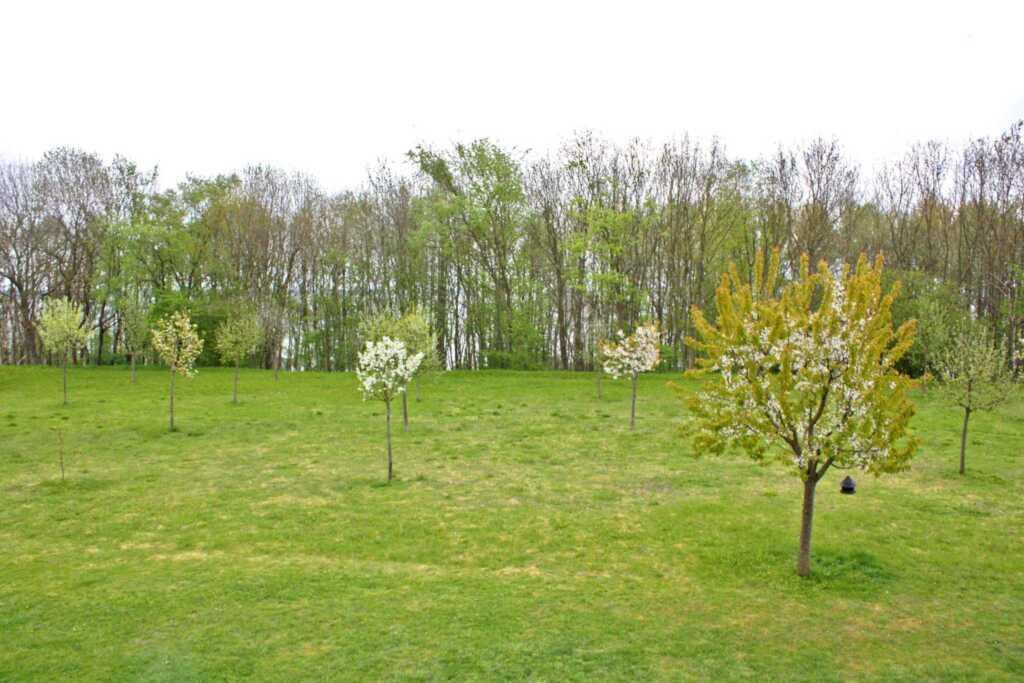 Ferienwohnungen Klink SEE 5930-3, SEE 5932 - Whg.