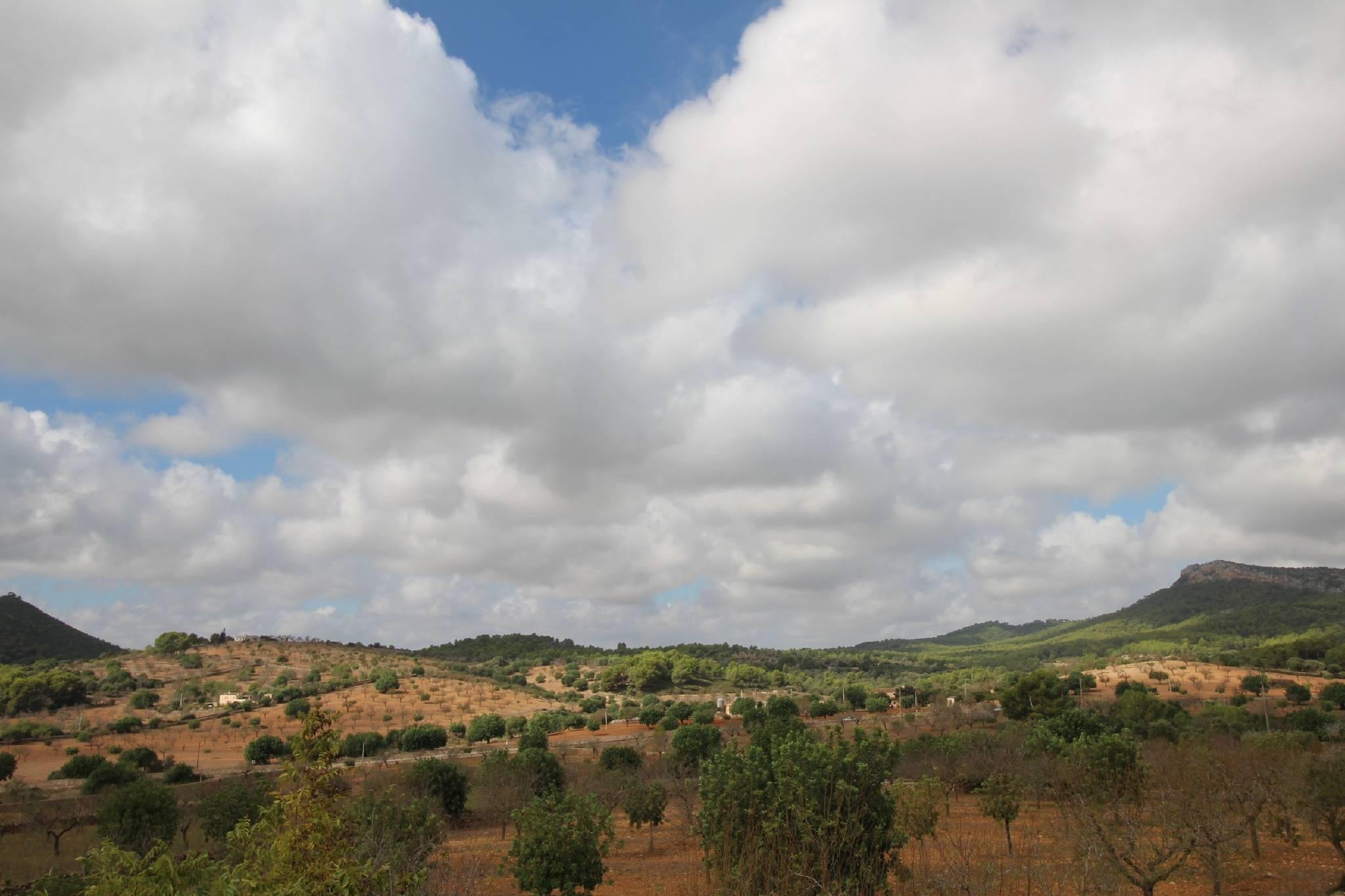 Finca Sa Bassa Seca   Garten   Umgebung