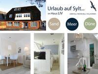 Haus LIV, Appartment Sand in Sylt - Westerland - kleines Detailbild