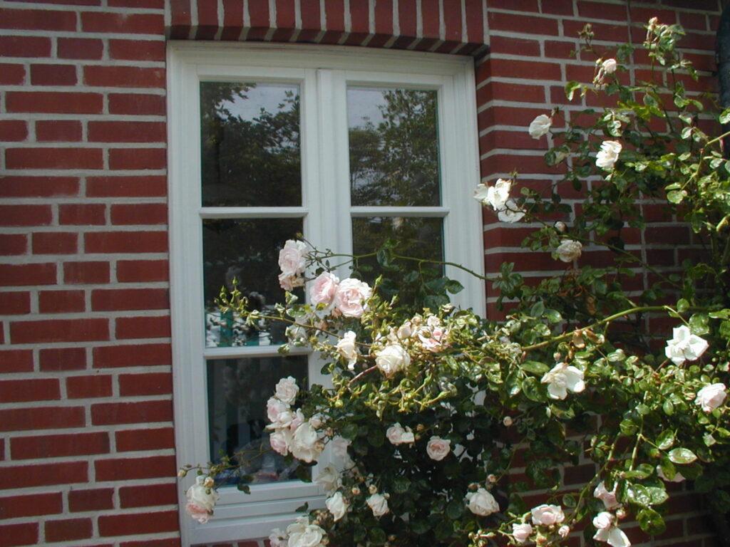 Haus Carsten, Appartement 'Haus Carsten'