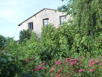 Alte Büdnerei in Ortsrandlage F 726, 2-Raum-Ferienwohnung für 2 Pers. in Kühlungsborn (Ostseebad) - kleines Detailbild
