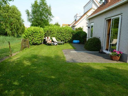 Garten hinter dem Haus mit Teich