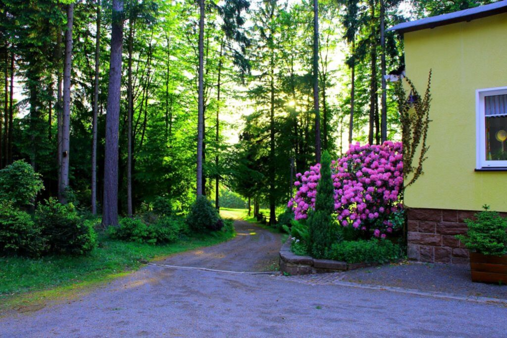 Thüringer Waldbaude, Ferienwohnung Waldblick