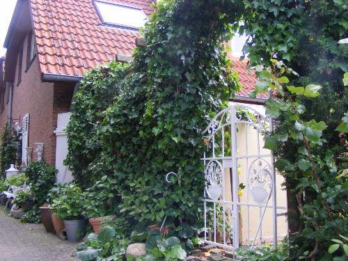 Das schöne Haus Jadeblick II.