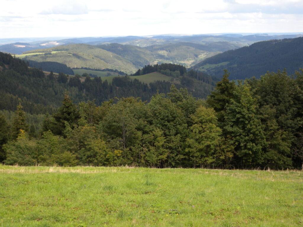 Ferienwohnung für 3 Personen-Forellenblick (TW5015
