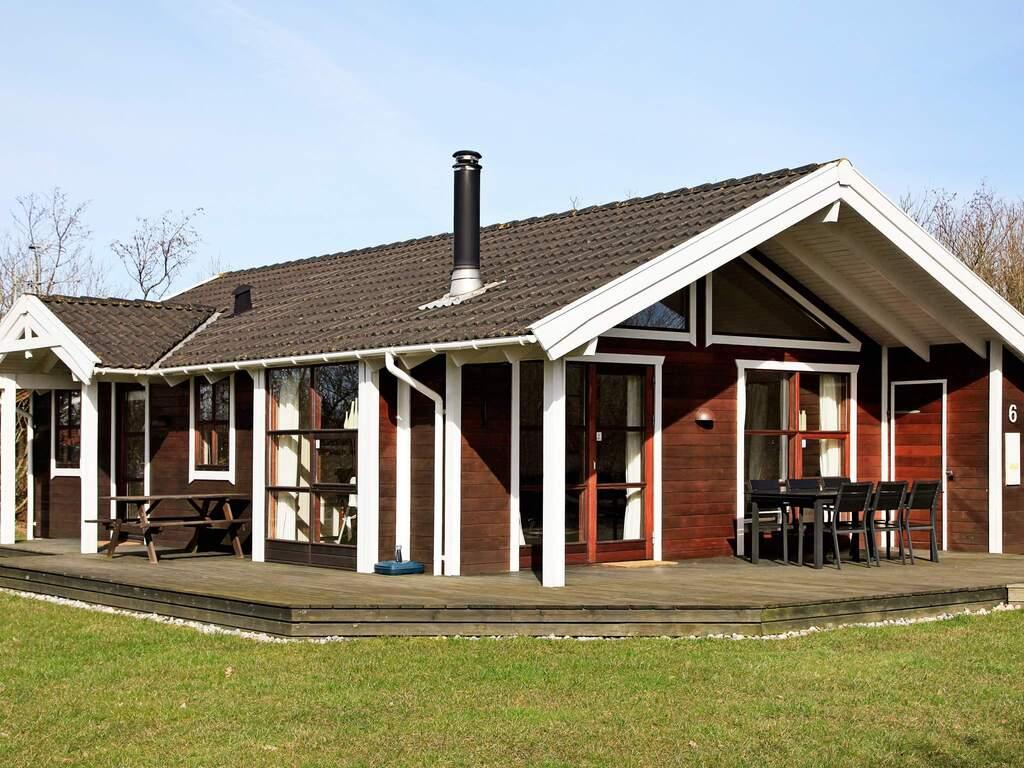 Detailbild von Ferienhaus No. 12103 in Hemmet