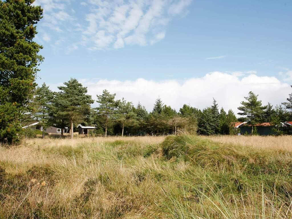 Umgebung von Ferienhaus No. 14686 in Fjerritslev