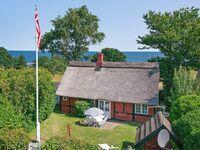 Ferienhaus No. 16083 in Svaneke in Svaneke - kleines Detailbild