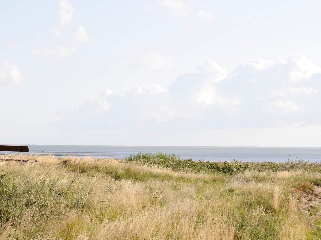 Umgebung von Ferienhaus No. 16709 in Rømø