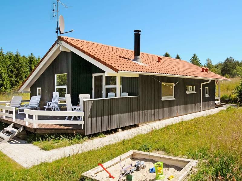 Detailbild von Ferienhaus No. 16850 in Silkeborg