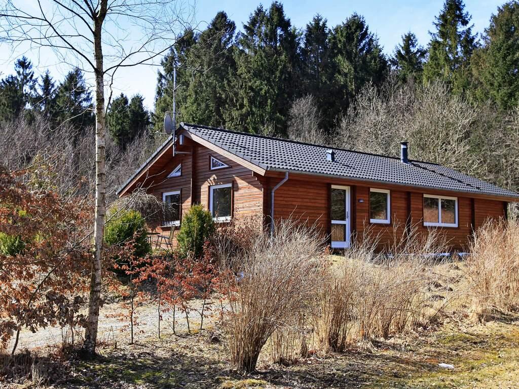 Zusatzbild Nr. 01 von Ferienhaus No. 17211 in Silkeborg