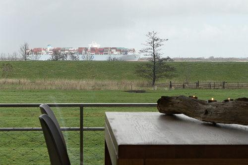 Blick auf die Elbe und Pferdekoppel