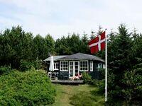Ferienhaus in Struer, Haus Nr. 25097 in Struer - kleines Detailbild