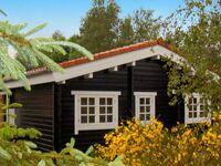 Ferienhaus in Toftlund, Haus Nr. 30754 in Toftlund - kleines Detailbild
