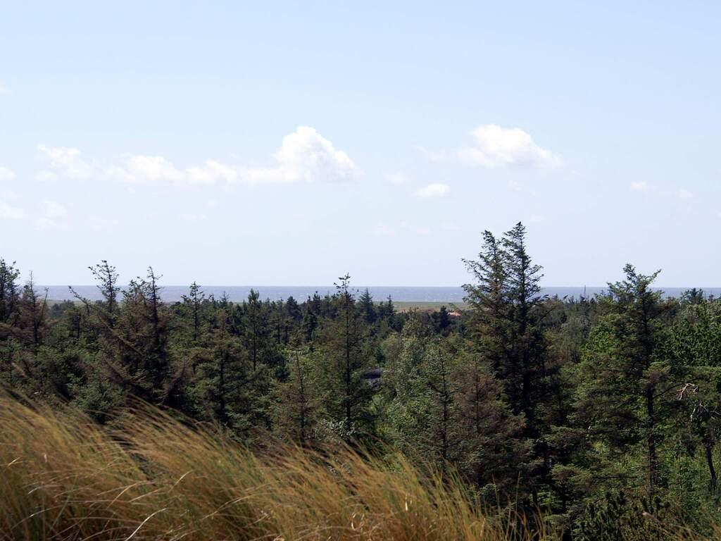 Umgebung von Ferienhaus No. 33744 in Blåvand