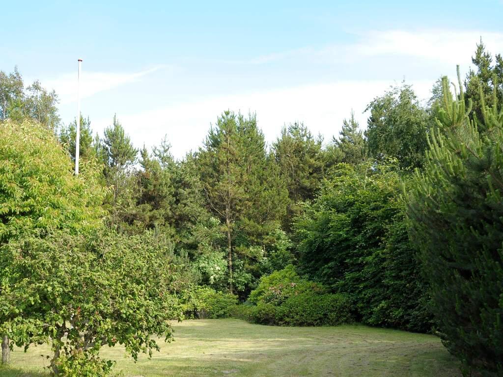Umgebung von Ferienhaus No. 39785 in Blåvand