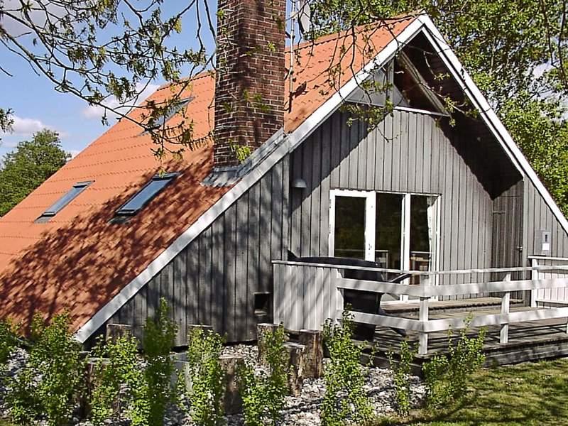 Detailbild von Ferienhaus No. 40225 in Hemmet