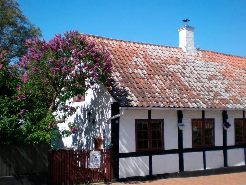 Detailbild von Ferienhaus No. 41343 in Svaneke
