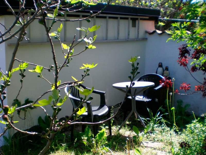 Umgebung von Ferienhaus No. 41343 in Svaneke