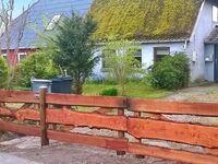 Ferienhaus in Bandholm, Haus Nr. 41366 in Bandholm - kleines Detailbild
