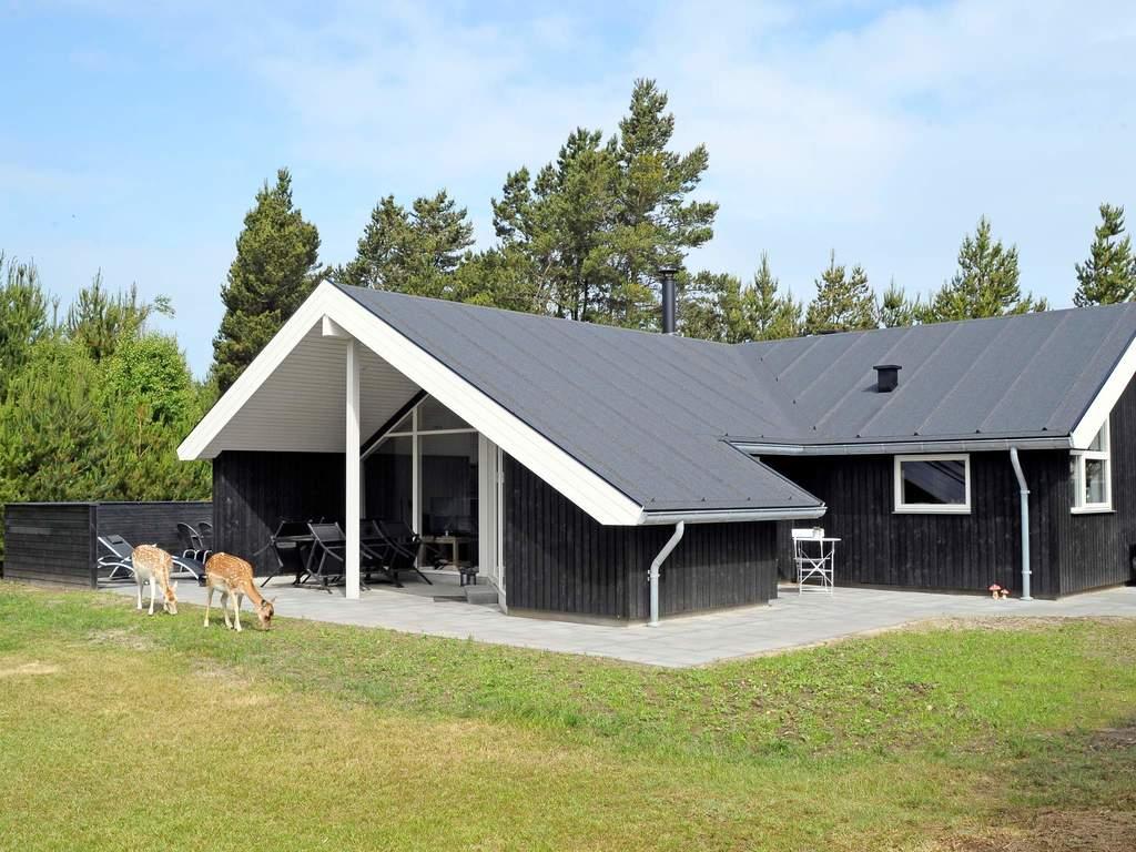 Detailbild von Ferienhaus No. 42750 in Bl�vand