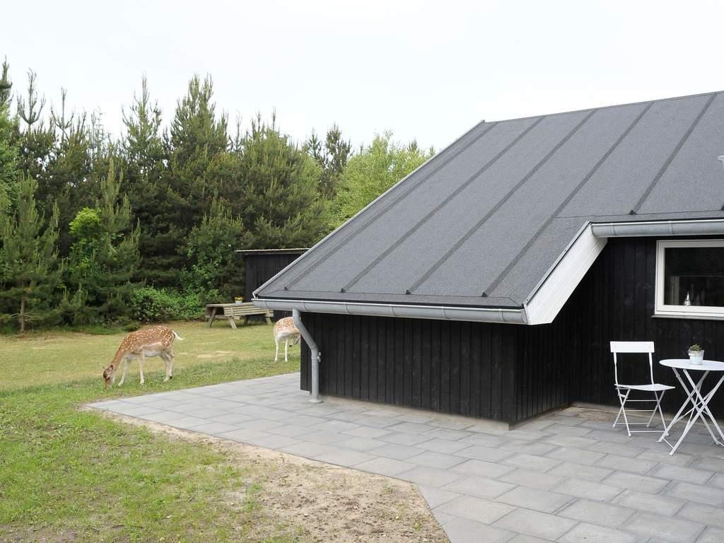 Zusatzbild Nr. 02 von Ferienhaus No. 42750 in Bl�vand