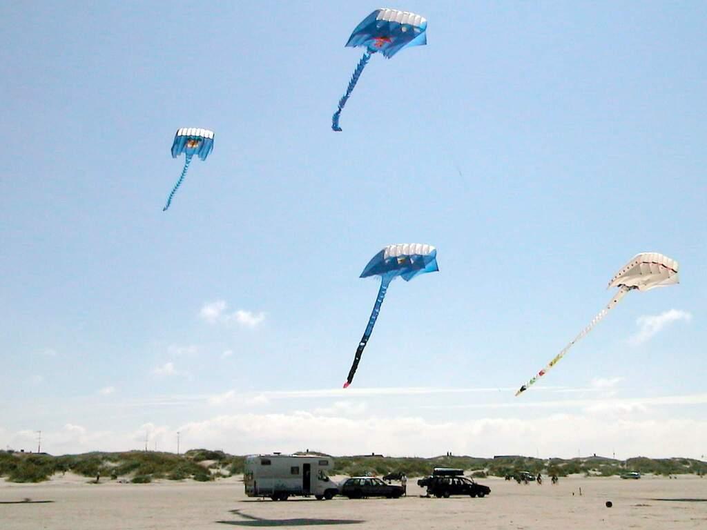 Zusatzbild Nr. 09 von Ferienhaus No. 43237 in Fanø
