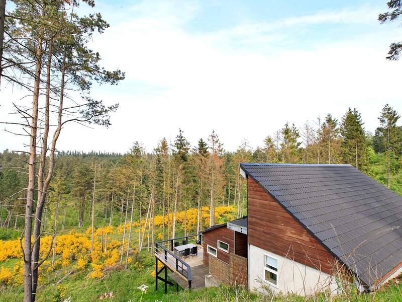 Detailbild von Ferienhaus No. 43249 in Ebeltoft