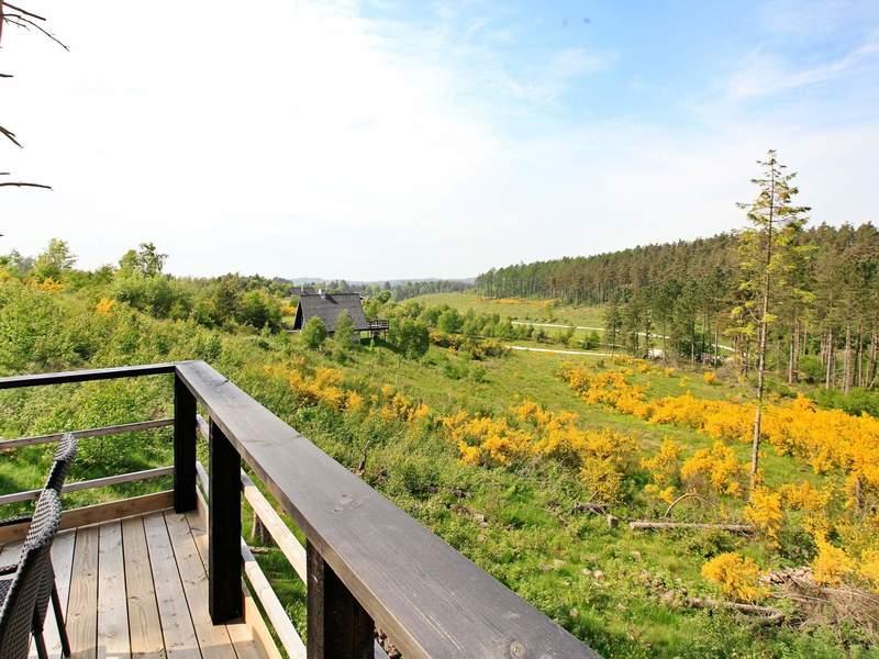 Umgebung von Ferienhaus No. 43249 in Ebeltoft