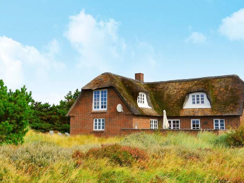 Detailbild von Ferienhaus No. 43454 in Blåvand