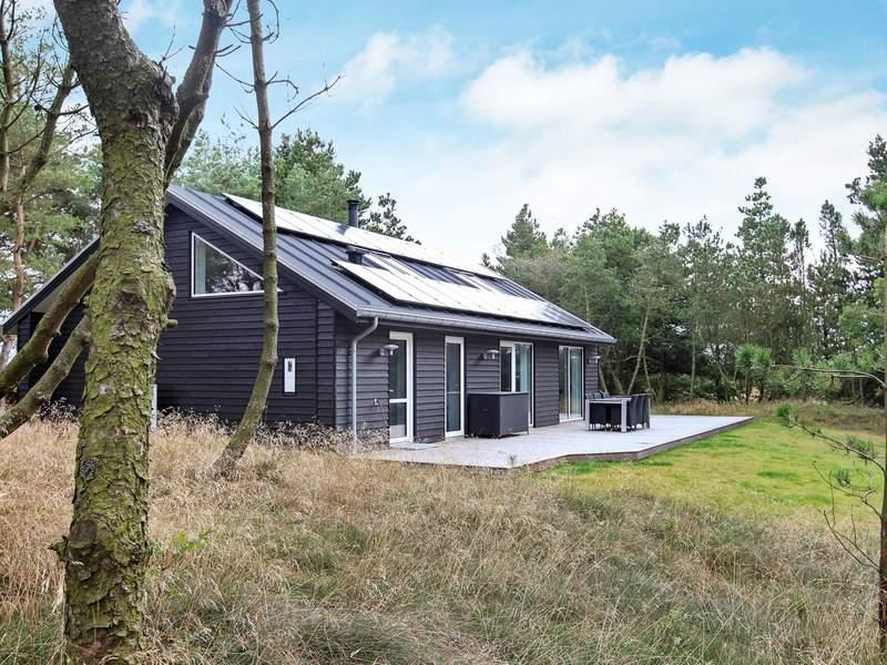 Umgebung von Ferienhaus No. 50541 in Blåvand