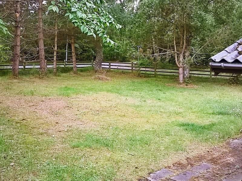 Umgebung von Ferienhaus No. 53625 in Rørvig