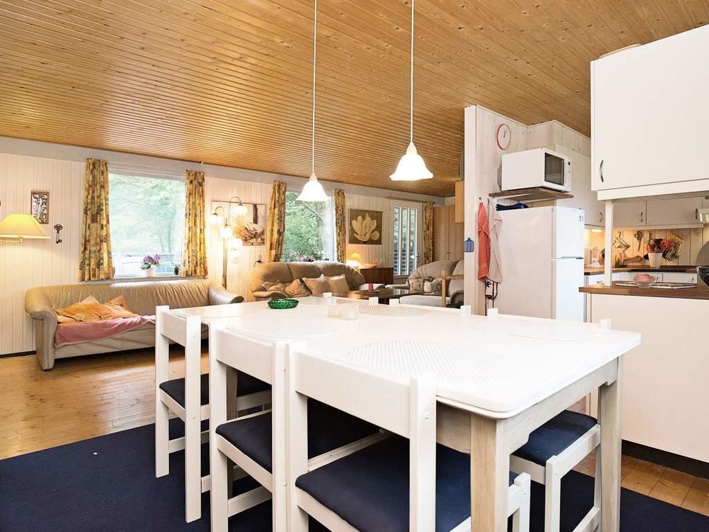Zusatzbild Nr. 05 von Ferienhaus No. 56882 in Ebeltoft