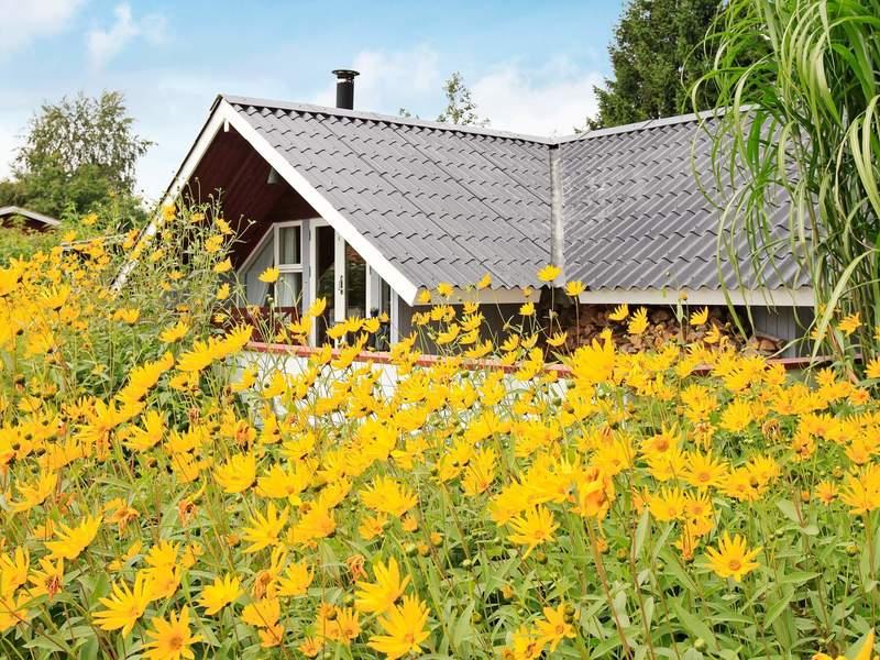 Umgebung von Ferienhaus No. 71314 in Hejls