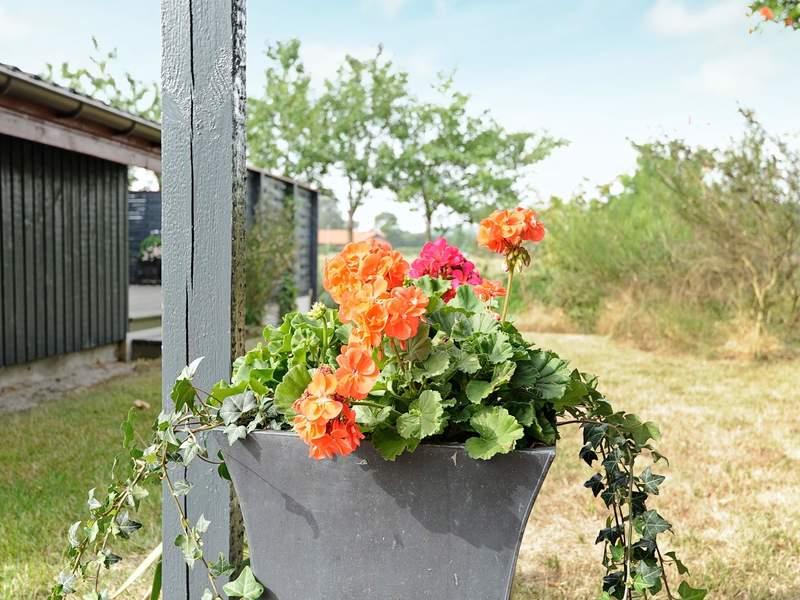 Umgebung von Ferienhaus No. 74505 in Juelsminde