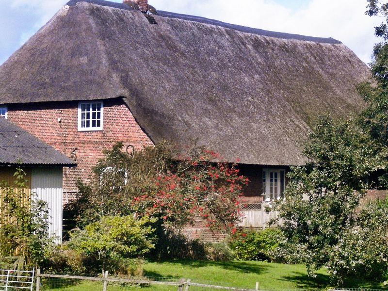 Zusatzbild Nr. 01 von Ferienhaus No. 76351 in H�jer