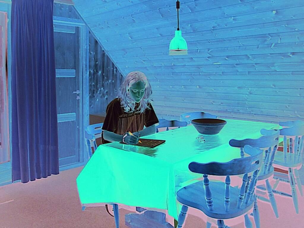 Zusatzbild Nr. 03 von Ferienhaus No. 79151 in Læsø