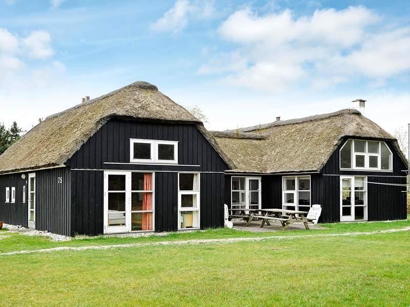 Detailbild von Ferienhaus No. 80026 in Blåvand