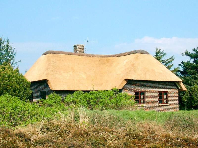 Detailbild von Ferienhaus No. 80398 in Bl�vand