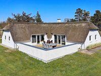 Ferienhaus No. 82796 in Bl�vand in Bl�vand - kleines Detailbild