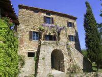 Ferienhaus Scopetelli in Lisciano Niccone - kleines Detailbild