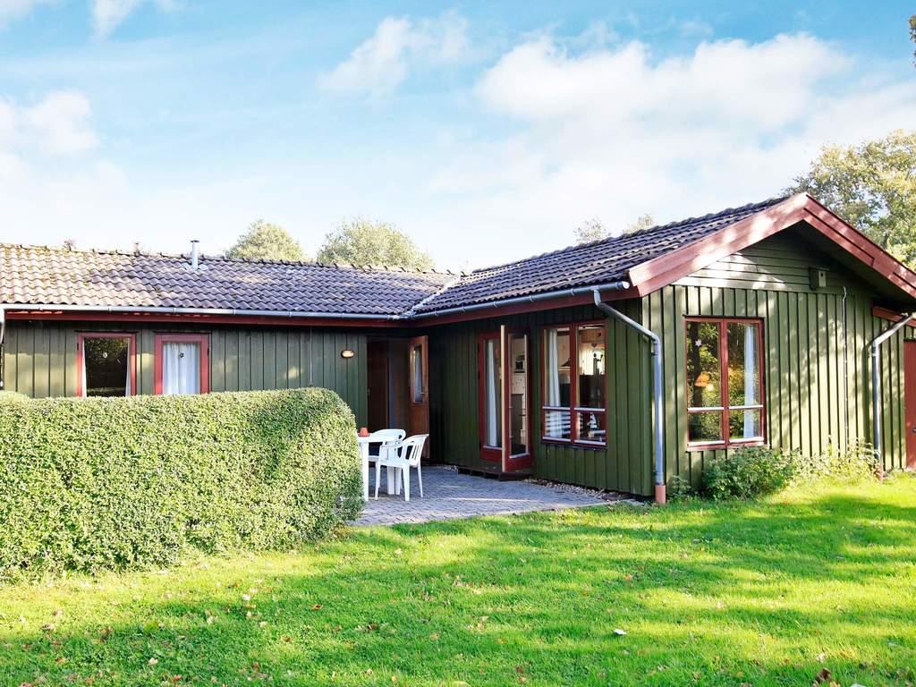 Detailbild von Ferienhaus No. 94863 in Hemmet
