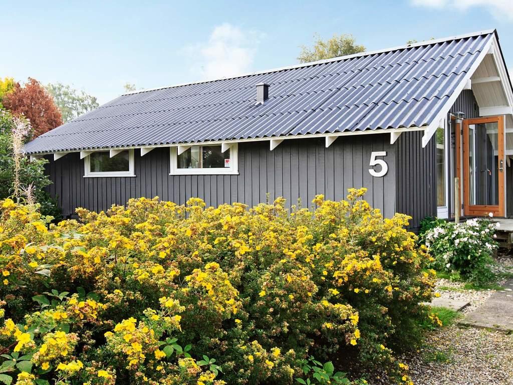 Detailbild von Ferienhaus No. 94930 in Hejls