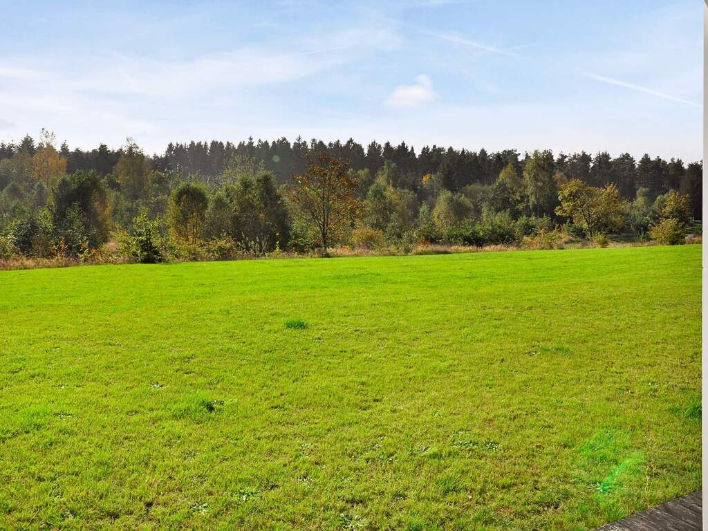 Umgebung von Ferienhaus No. 95718 in Gjern
